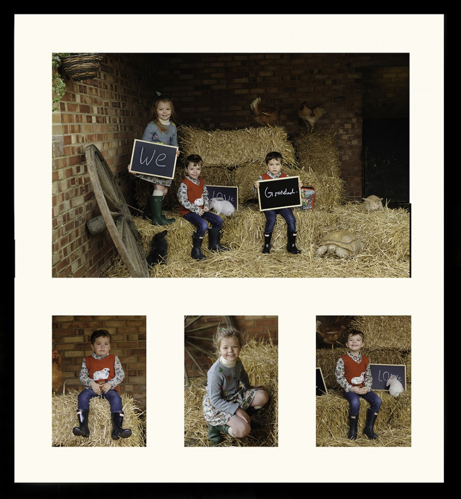 Farm Portraits essex